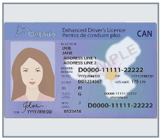 instaryde drivers license requirement 2017